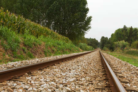 Empty Railway track trough woods on cloud day Stock Photo