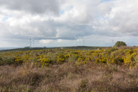 Some windmills turbines on the top of an hill Stock Photo - 16587052