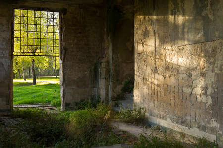 Entrance and of abandoned old building against woods