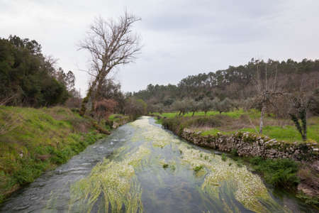 Small river trough woods under cloudy sky in Portugal Stock Photo