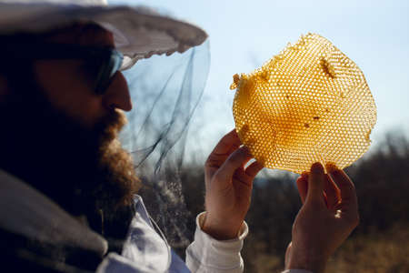A beekeeper looking careful a honeycomb.