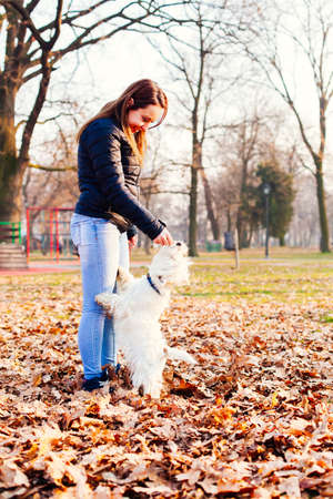 Young girl feeding her dog outdoor