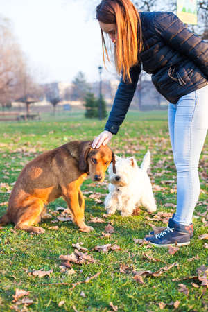 dogie: Girl having a cuddle with her dog in a park