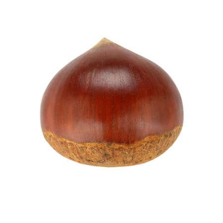 castaas: castañas sola sobre un fondo blanco