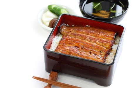 l'anguille grillée sur riz, unaju, Japanese Cuisine unagi