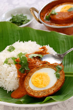 nargisi kofta curry and rice, indian cuisine