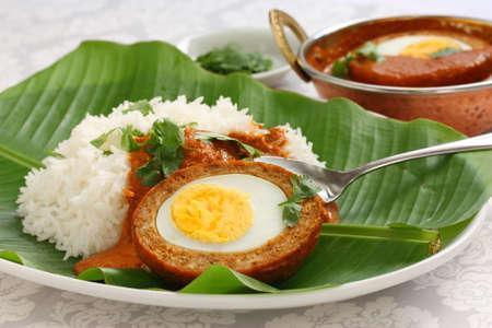 nargisi kofta curry and rice, indian cuisine