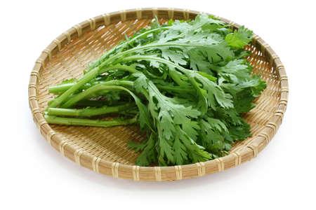 greens: chrysanthemum greens, garland chrysanthemum, shungiku Stock Photo