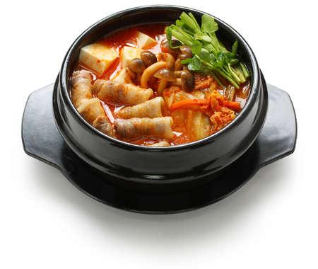 guiso de kimchi, chigae kimchi, la cocina coreana Foto de archivo