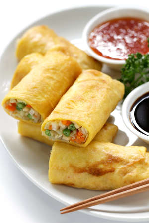 homemade vegetarian egg rolls photo