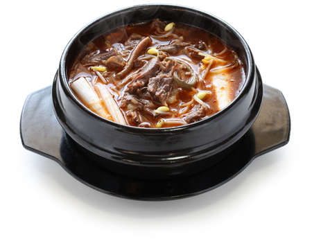 yukgaejang, spicy beef and vegetable soup, korean food photo