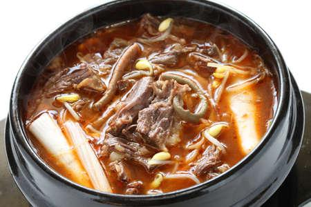 korean food: yukgaejang, spicy beef and vegetable soup, korean food Stock Photo