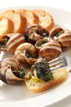 escargot, snails a la bourguignonne photo