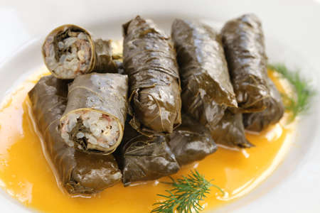 dolma, stuffed grape leaves with egg lemon sauce, turkish and greek cuisine
