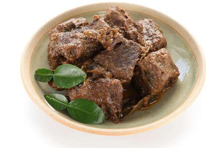 rendang carne, indonesio cocina Foto de archivo