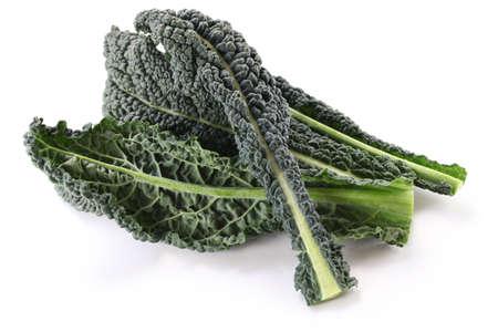 black kale, italian kale Stock Photo