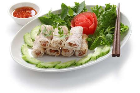net spring rolls, chao gio re, vietnamese cuisine photo