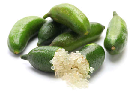 lime green background: finger lime, micro citrus on white background
