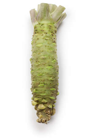 wasabi: wasabi japanese horseradish root, condiment for sushi, sashimi