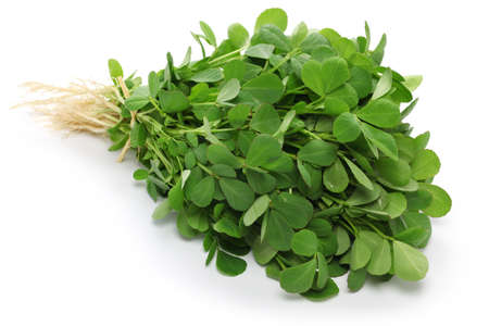methi, fenugreek leaves isolated on white background Stock Photo