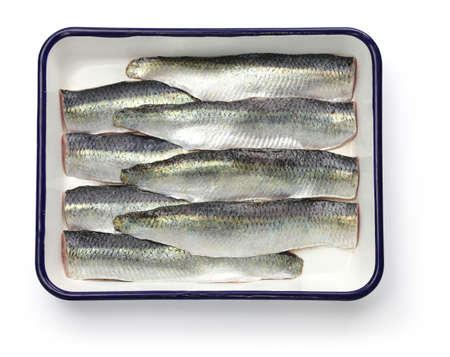 cooking process of pickled herring, sliced salted herrings on white enamel tray photo