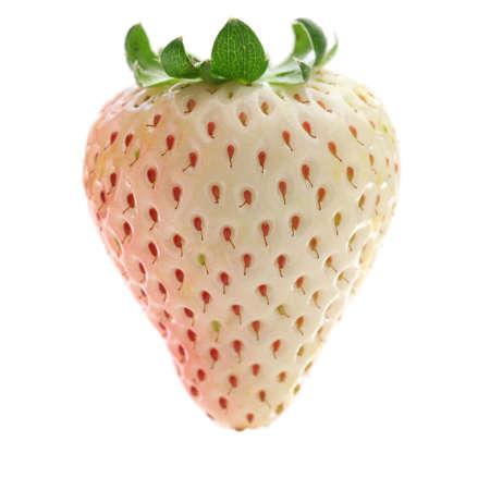 white strawberry isolated on white background