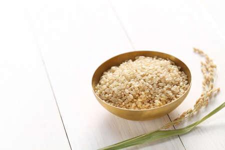 bruine rijst met oor van de rijst, Japans gezond voedsel, kopiëren ruimte