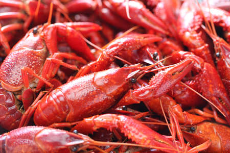 boiled crawfish, clayfish party