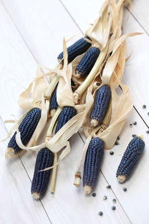 tortilla de maiz: maíz azul, cocina mexicana ingrediente