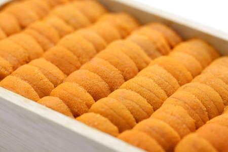 sea urchin roe japanese sushi and sashimi ingredients