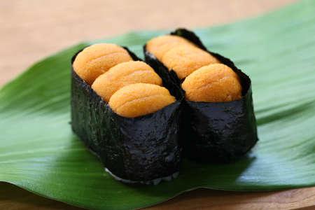 uni: sea urchin roe japanese sushi uni gunkanmaki