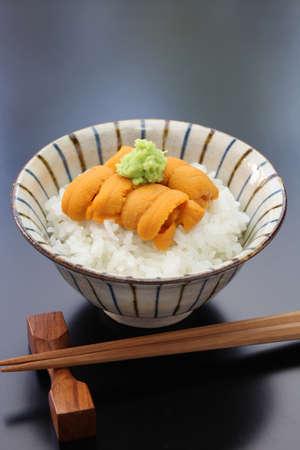 sea urchin roe on rice japanese food