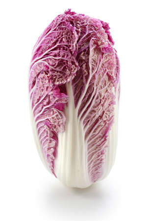 leaf vegetable: purple chinese cabbage isolated on white background