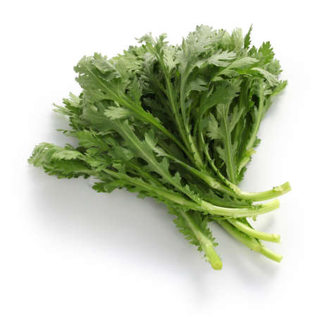 Crown daisy, chrysanthemum greens with green chop suey, shungiku Stock Photo