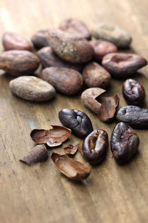 husk: raw and roasted cacao cocoa beans Stock Photo