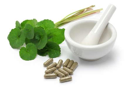 mortar and pestle medicine: gotu kola, asiatic pennywort, centella asiatica, medicine capsule, mortar and pestle