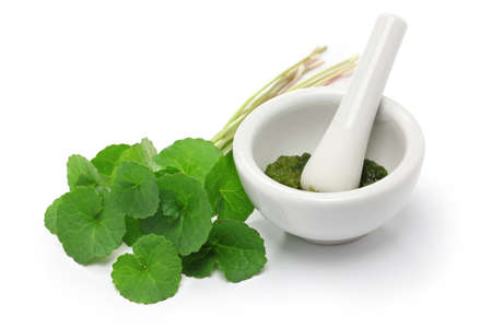 gotu kola, asiatic pennywort, centella asiatica, medicine capsule, mortar and pestle Stock Photo - 56152368