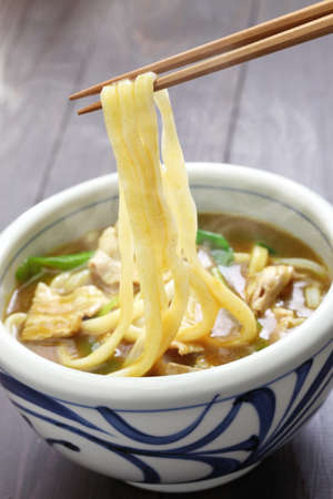dashi: Curry udon, japanese noodles soup dish