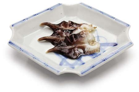 shellfish: torigai, japanese cockle isolated on white background