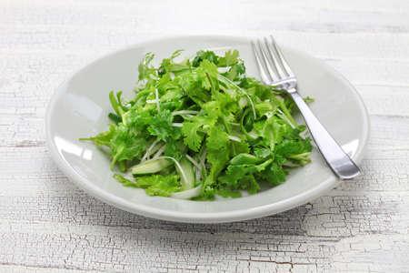 cilantro: ensalada de cilantro y ensalada de cilantro Foto de archivo