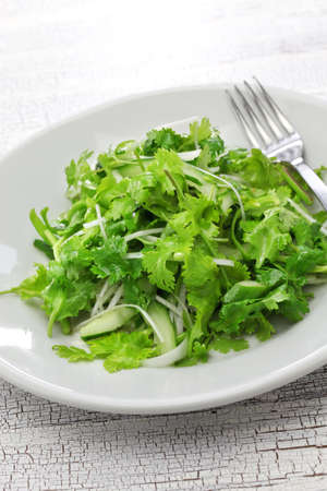 cilantro: cilantro salad and coriander salad Stock Photo