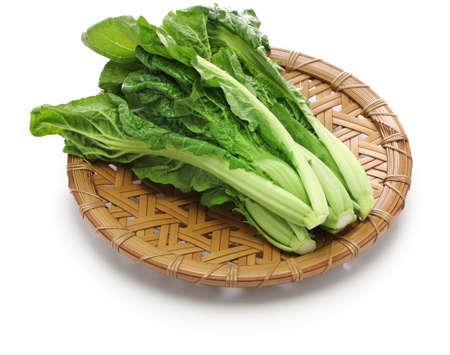 leaf vegetable: takana, brassica juncea var integrifolia, japanese leaf vegetable Stock Photo