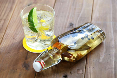 infusion gin and tonic