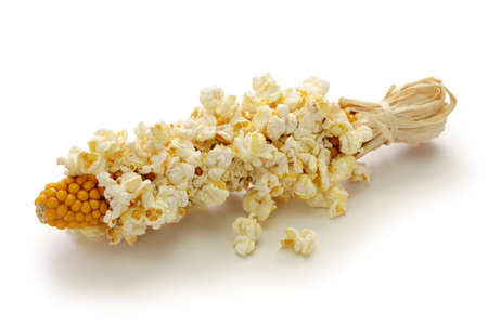 popcorn on the cob isolated on white background