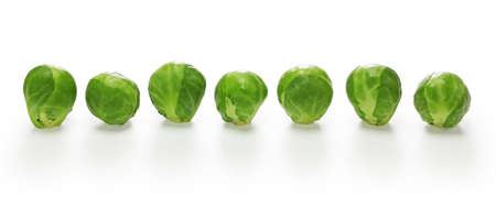fresh brussels sprouts banner on white background