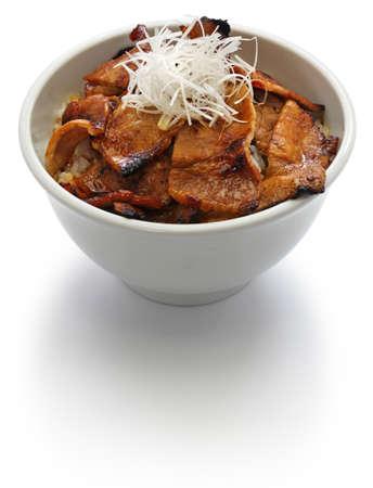 teriyaki pork rice bowl, butadon, japanese food Stock Photo
