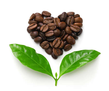 heart shaped roasted coffee beans and leaves, the fair trade concept image isolated on white background