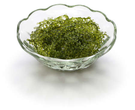 umi budo, green caviar, sea grapes, seaweed, edible algae
