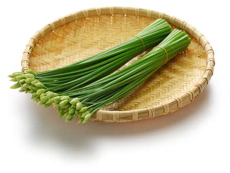 flowering garlic chives on bamboo basket Imagens