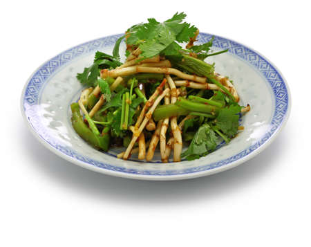 chinese Zheergen salad, fish mint root salad, guizhou cuisine Imagens